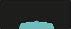 Expert Web Services Logo